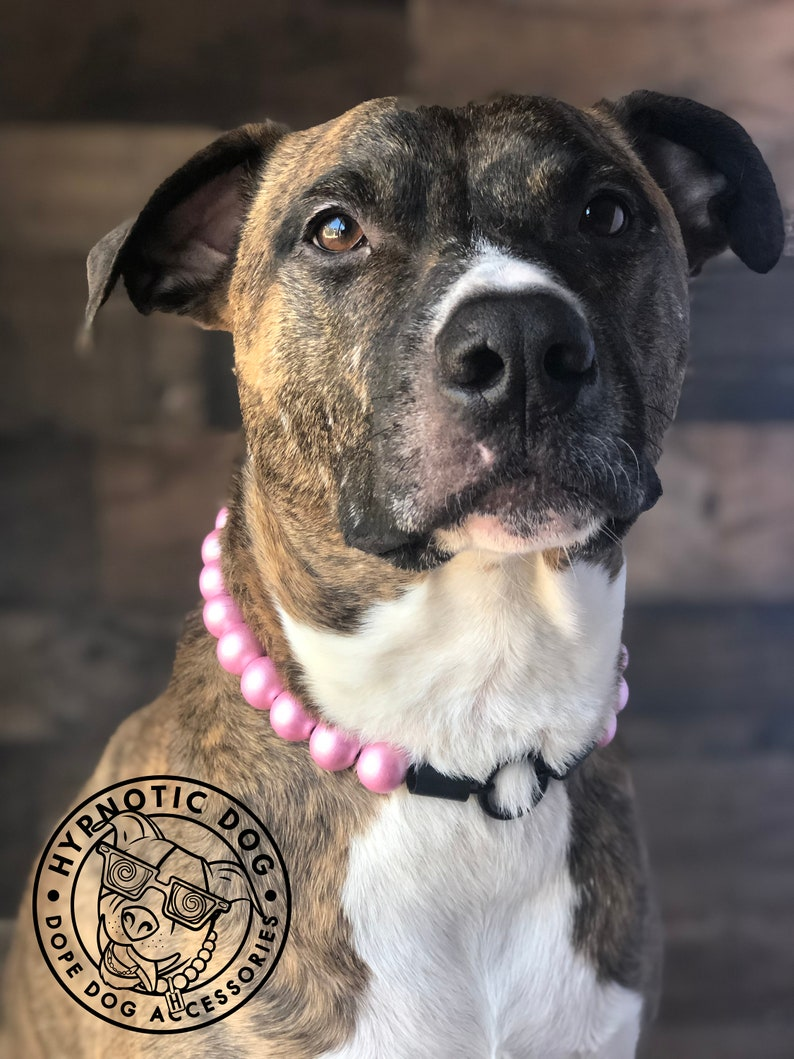 beaded bright large slip on collar free shipping unique unbreakable Baby Pink WOODEN metallic bead collar Hypnotic Dog Collar