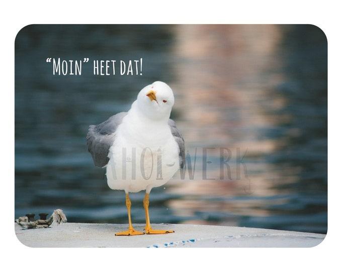 """Postcard """"Moin heet dat"""""""