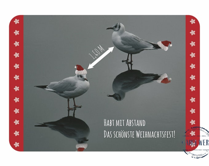 """Postcard """"By far the most beautiful Christmas"""" funny Christmas card in Corona times with seagulls"""