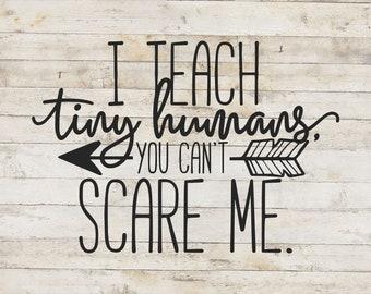 I Teach Tiny Humans / Teacher Decal / School Decal / Mug Decal / Teaching Decal / Teacher Sticker
