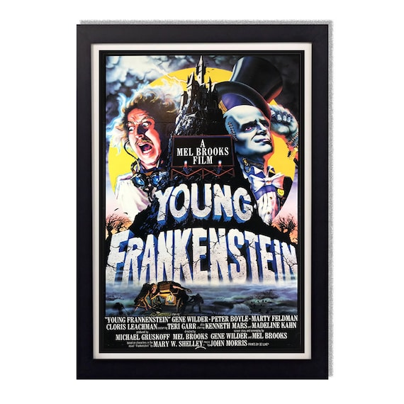 House Of Frankenstein Movie Poster 24in x 36in