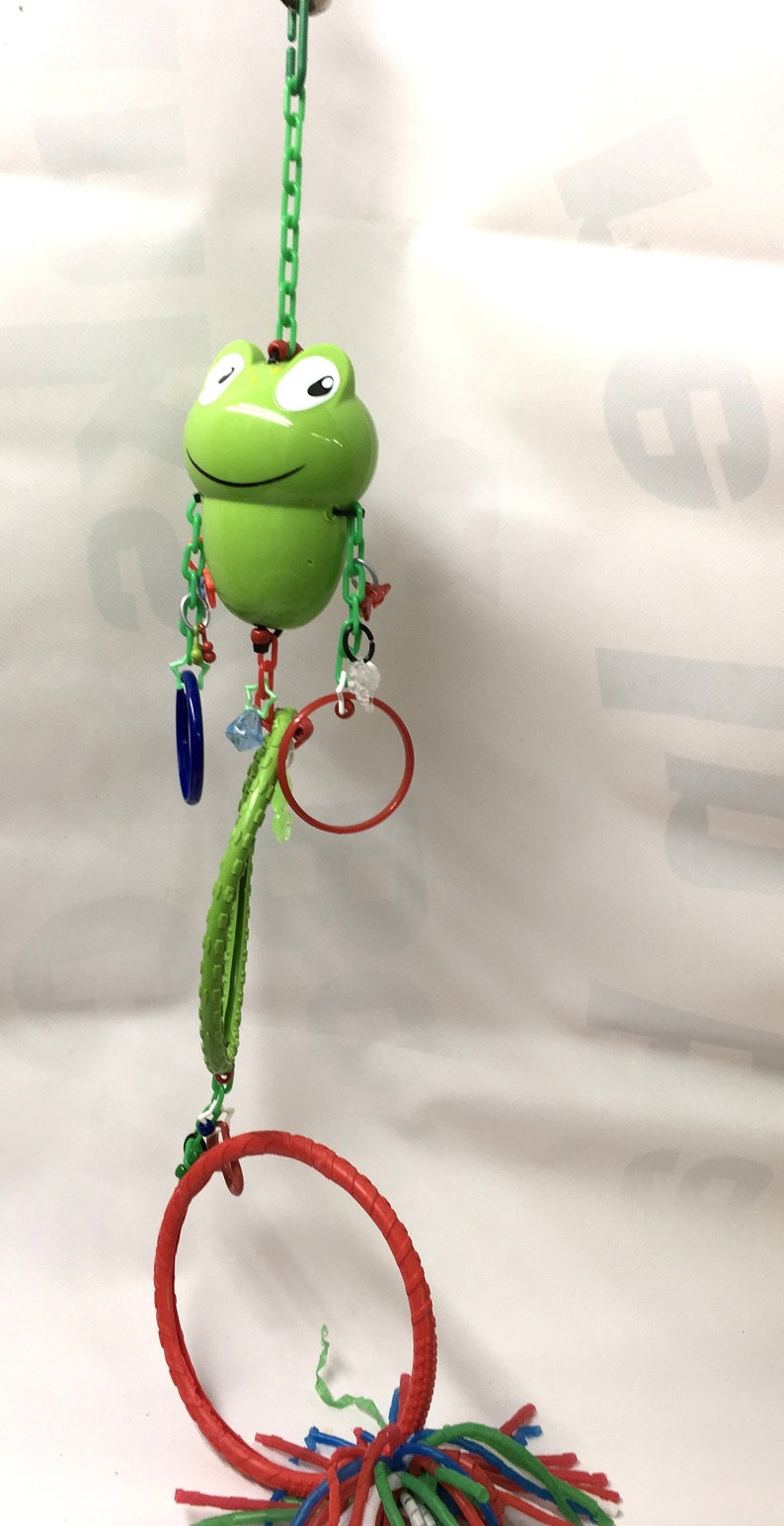 Sugar Glider Frog Dual Circle toy