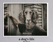 "Poster:""A Dog's Life"" 40 x 30 cm"