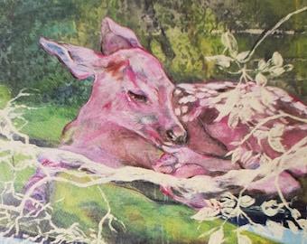 Fine Art Animal Print, Fawn Giclée Print