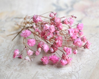 Small preserved flowers