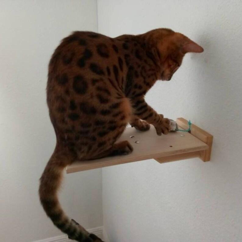 4- Pc Natural Cat Shelf Set Small Animal Pet Kitty Kitten House Home  Climbing Wall Mounted Steps Shelf Perch Platform Furniture Supplies
