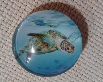Sea Turtle Needle Minder (0234)