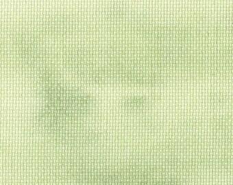 Wild Wasabi Traditional Effect