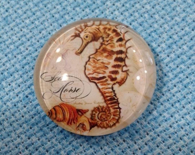 Sea Horse & Conch Shell Needle Minder (0056)