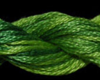 Tropical Green (01047) Threadworx over-dyed embroidery threads