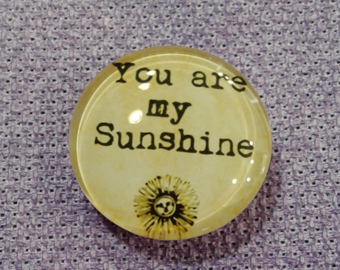 You Are My Sunshine Needle Minder (0209)
