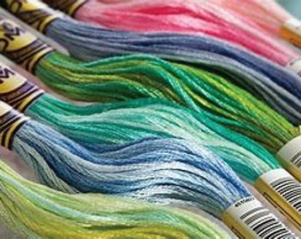 DMC (4000-4095)Color Variations Floss