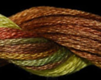 Fall (01163)  Threadworx over-dyed embroidery threads