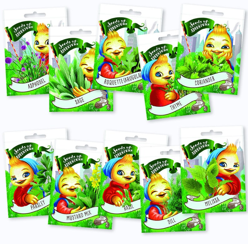 garden in a box Herbs seeds