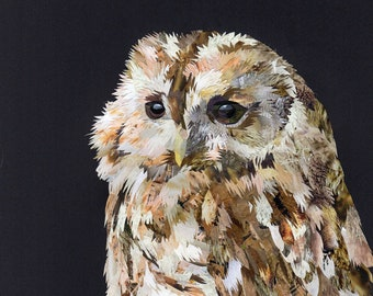Ochre the Owl, collage, signed limited edition A4 print