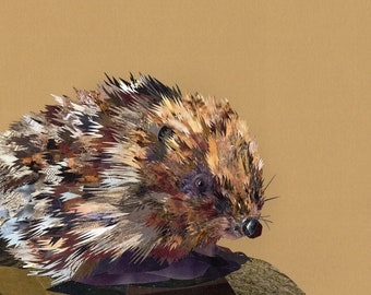 Emmett the Hedgehog, collage, signed limited edition A4 print