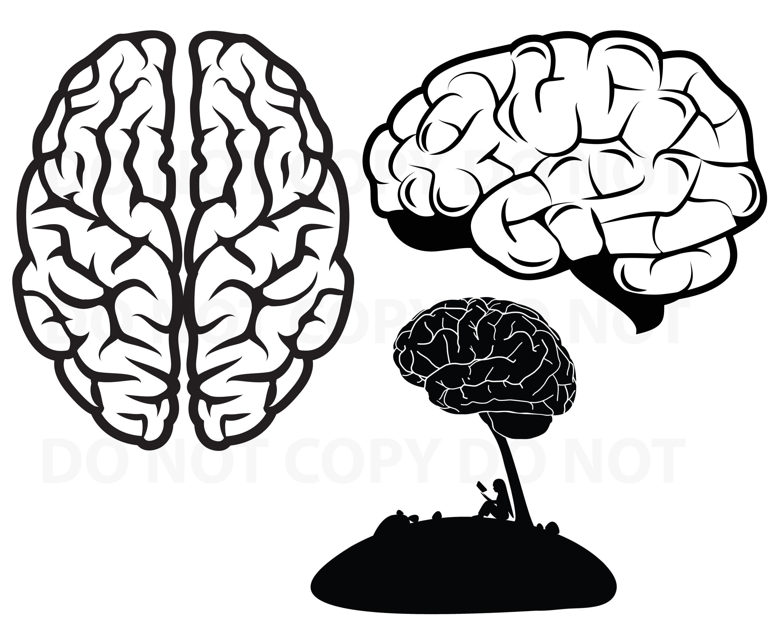 Gehirn SVG Datei für Cricut Bundle   Lesung Vektor Bilder Clipart  menschliche Gehirn SVG Schnitt Bild   Eps, Png, Dxf Schablone ClipArt    lesen
