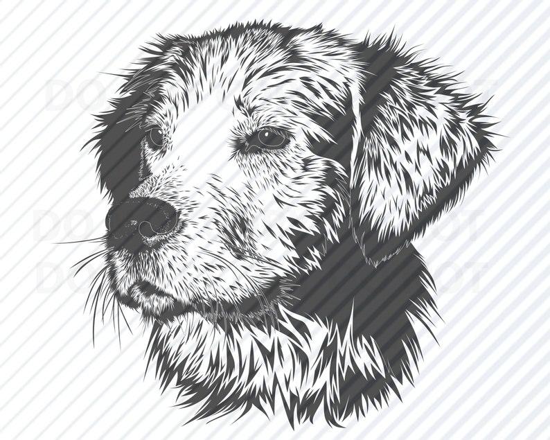 Dog Dog Head Silhouette Vector