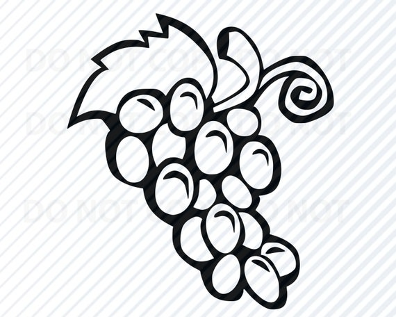 Grapes frame with leaves vector image on VectorStock   Clip art borders,  Grapes, Frame