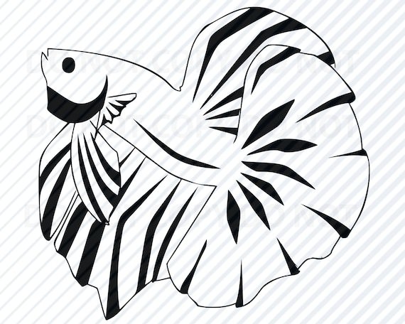 Download Betta Fish Svg Files Vector Images Silhouette Goldfish Etsy