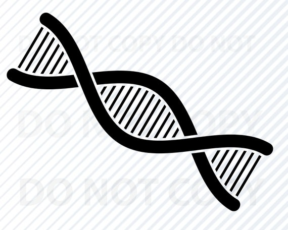 Dna Svg File For Cricut Silhouette Dna Vector Images Clipart Etsy