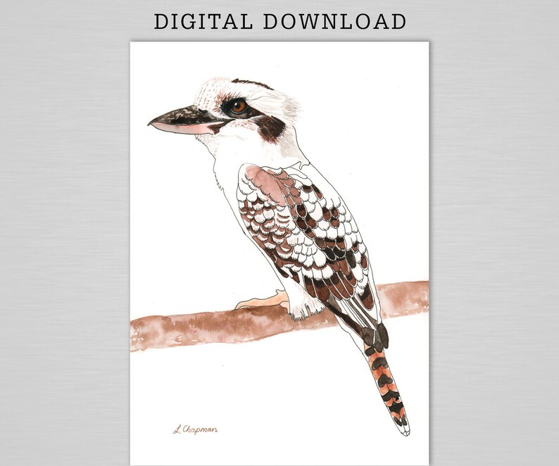 Kookaburra watercolour print digital download image 0