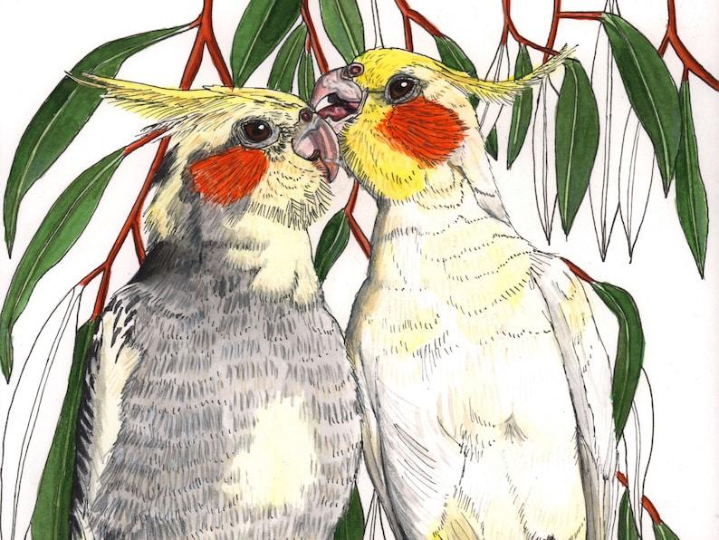 Cockatiel pair watercolour painting original image 0