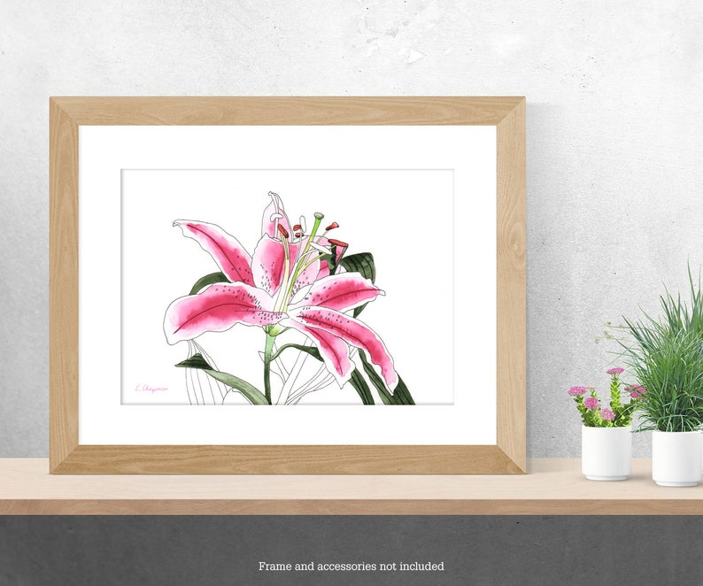 Oriental lily watercolour painting image 0