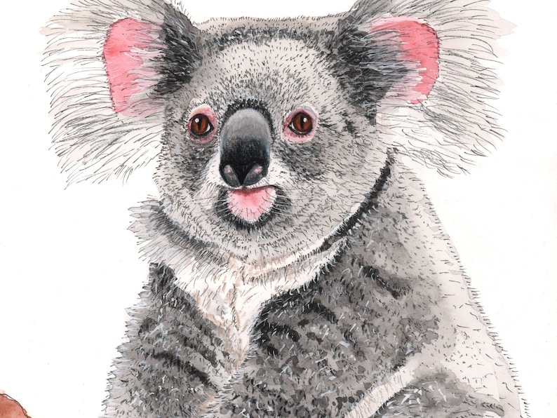 Young koala in tree watercolour painting original image 0