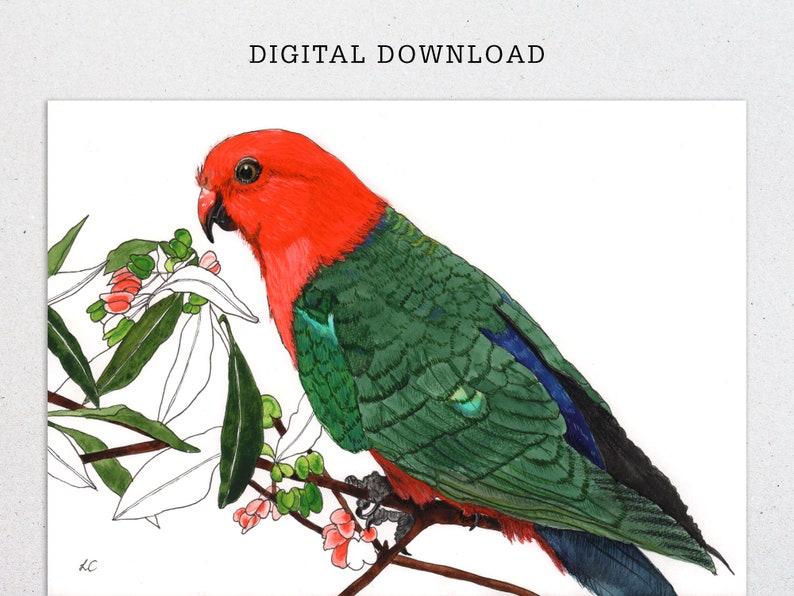 King Parrot watercolour print digital download image 0