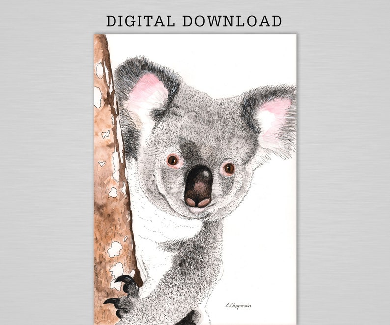 Baby koala in tree watercolour print digital download image 0