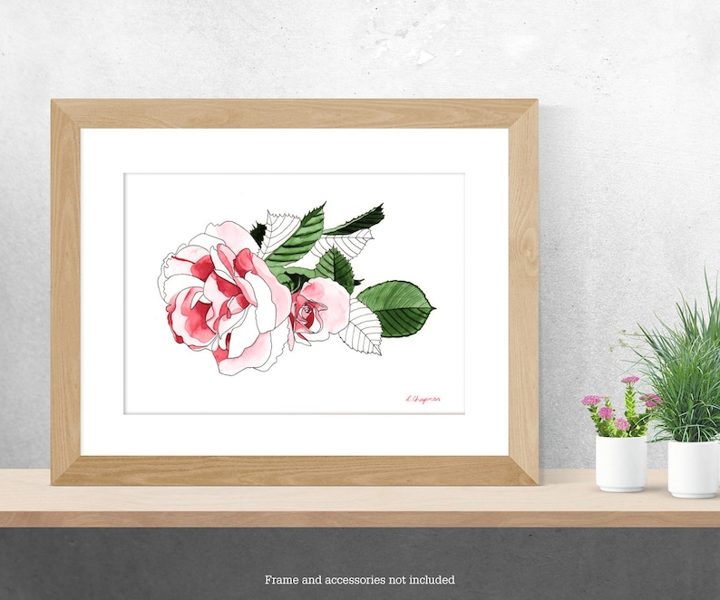 Tea rose flower watercolour painting image 0