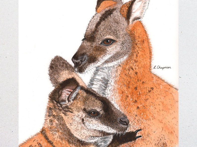 Wallaby mother and joey watercolour painting original image 0