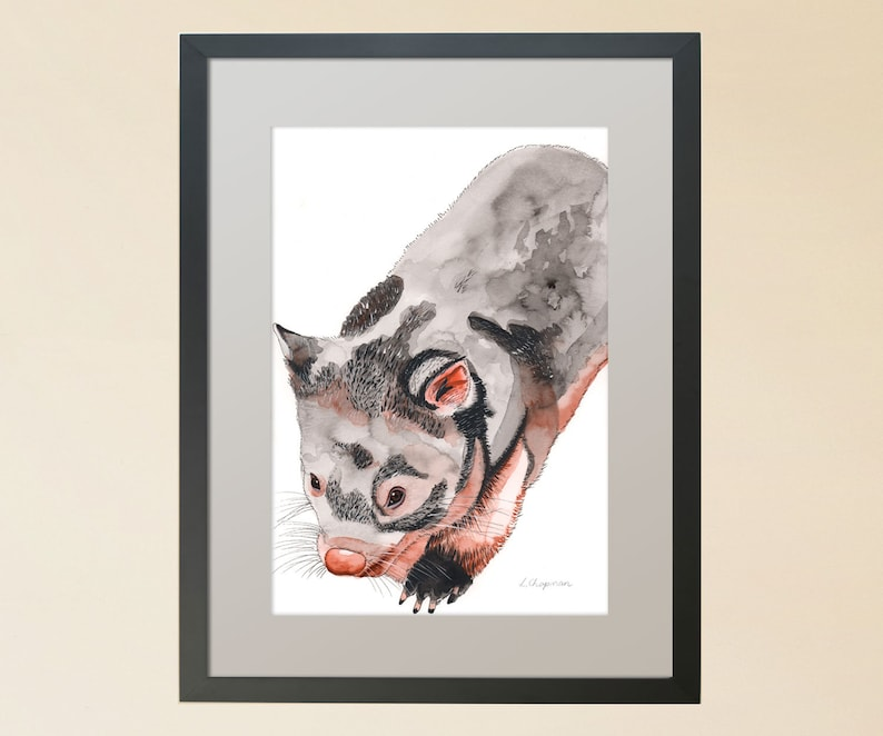 Wombat watercolour painting image 0