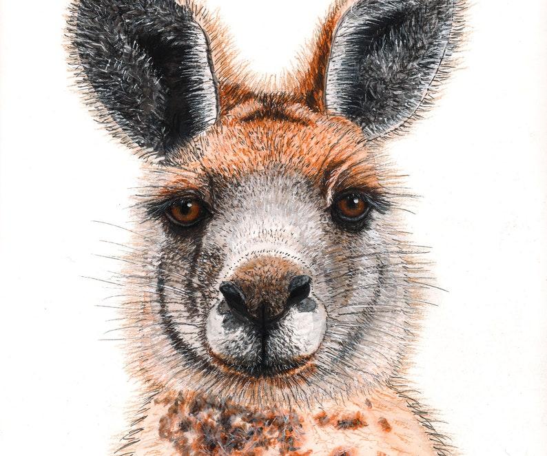 Young kangaroo watercolour painting original image 0