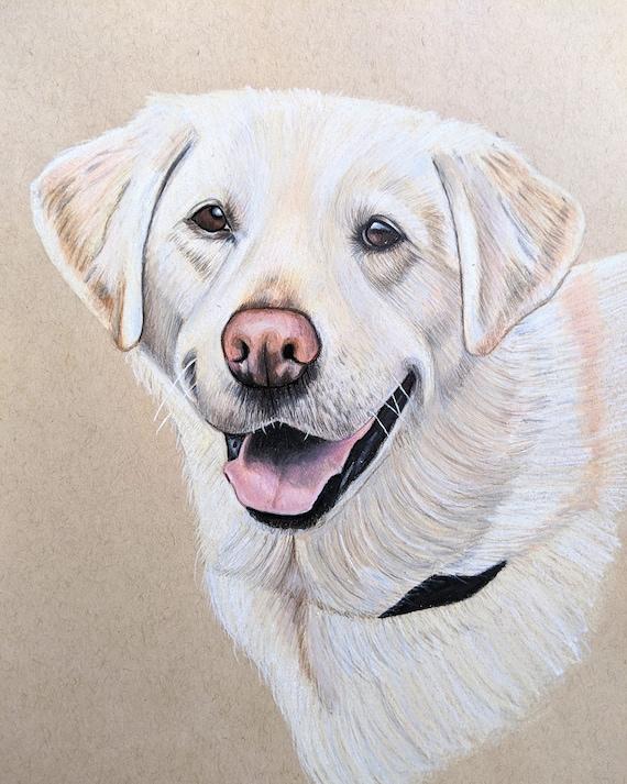 2 colours available Custom Pet Portrait on TONED paper 9 x 12