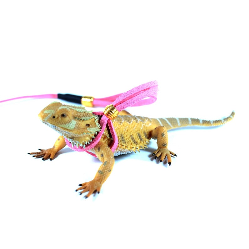 Bearded Dragon Leash Pink Reptile Adjustable Leash Iguana Leash Reptile Harness Bearded Dragon Harness Gecko Leash Reptile Accessories