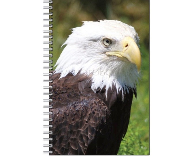 American Bald Eagle Notebook, American Eagle Notebook, Eagle Notebook, School Supply, Notebook, Nature Notebook, Bird Notebook, Eagle