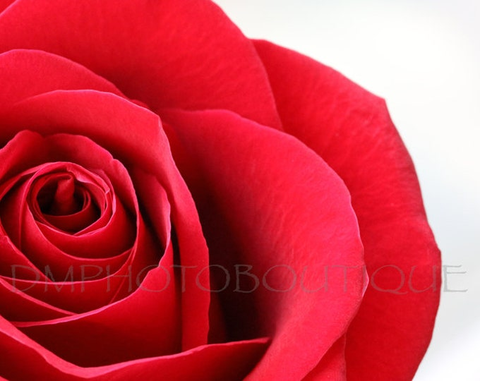 Red Rose Print, Rose Print, Rose Art Work, Rose Artwork, Rose Photo, Rose Photograph, Flower Print, Flower Photo, Flower Wall Art