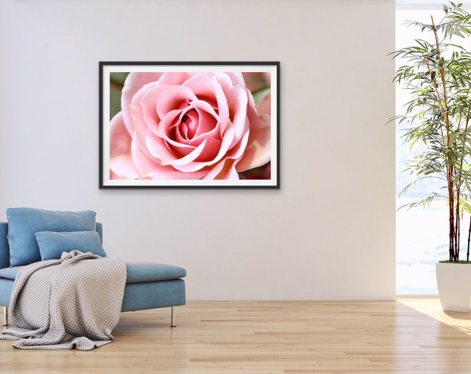 Rose Print, Flower Photo, Flower Art, Rose Photo, Rose Photography, Wall Decor, Rose Art Work, Wall Art, Wall Art Print, Flower Print