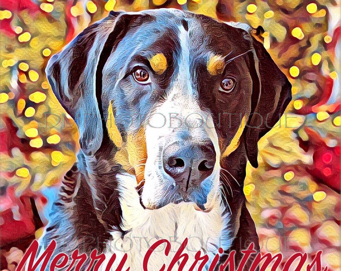 Greater Swiss Mountain Dog Christmas Cards, Swissy Christmas Cards, Greater Swiss Mountain Dog, Swissy, Greater Swiss Holiday Cards,Dog Xmas