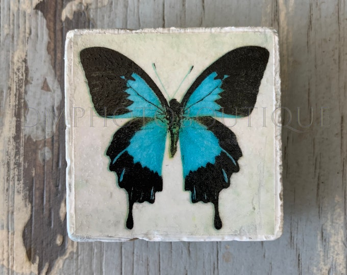 Butterfly Magnets (Set of 3), Butterfly Refrigerator Magnets, Nature Magnets, Blue Butterfly Magnets, Insect Magnets, Decorative Magnets