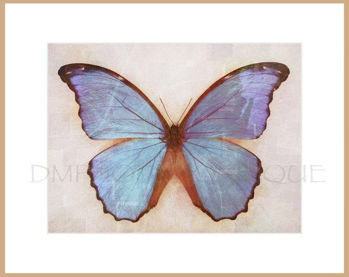 Blue Butterfly Print, Blue Morpho Butterfly Print, Butterfly Print, Butterfly, Butterfly Art, Butterfly Art Print, Butterfly Notecards