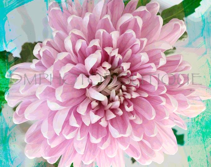 Flower Art Print, Flower Art Canvas, Flower Art, Flower Artwork, Floral Wall Art, Flower Notecards, Flower Wall Art, Flower Wall Decor