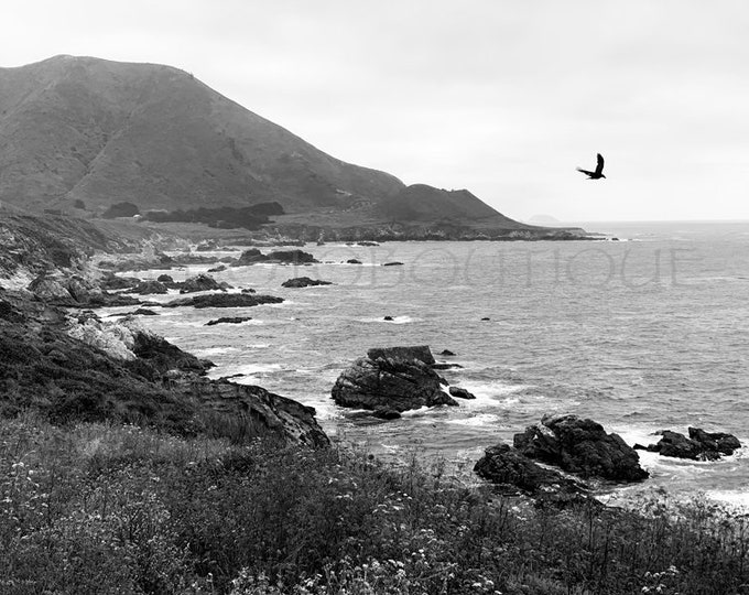 Ocean Landscape, Big Sur Photo, Highway 1 Photo, Big Sur Landscape, Coastal Wall Art, Big Sur Print, Big Sur Black & White Photo,Big Sur Art
