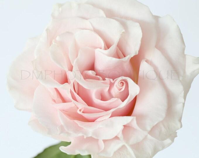 Flower Print, Flower Art, Flower Photo, Flower Wall Decor, Flower Wall Art, Floral Print, Flower Photography, Flower Art Print, Flower