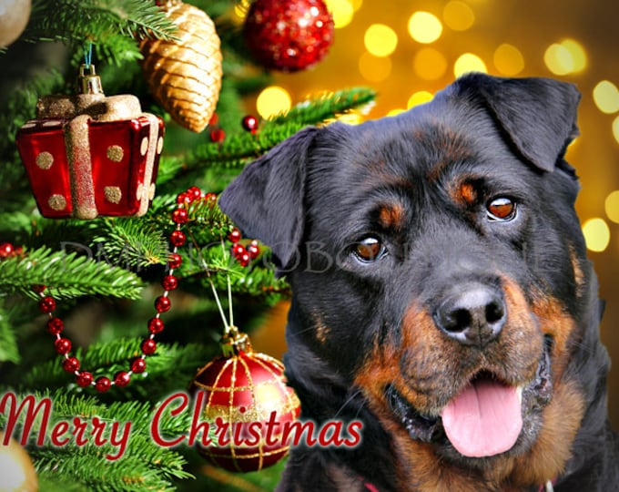 Rottweiler Christmas Cards, Rottweiler Cards, Rottweiler Holiday Cards, Rottweiler, Dog Christmas Cards, Dog Cards, Christmas Cards, Dog