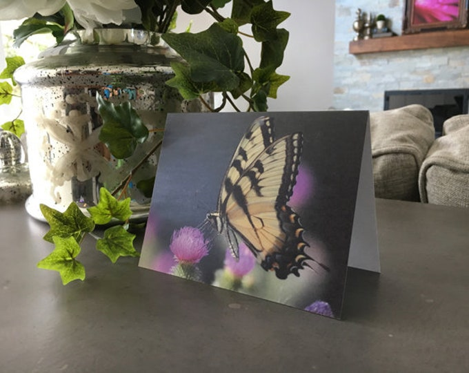 Butterfly Notecards, Butterfly Photography, Butterfly Gift, Stationary, Butterfly, Butterfly Stationary, Spring Stationary,Mother's Day Gift
