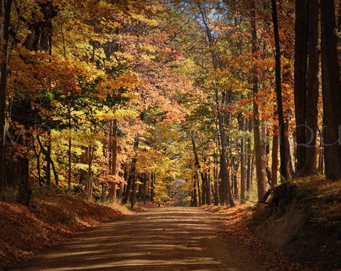 Fall Print, Fall Canvas, Fall Decor, Fall Landscape Art, Fall Landscape Print, Fall Landscape Canvas, Fall Landscapes, Fall Photography,Fall