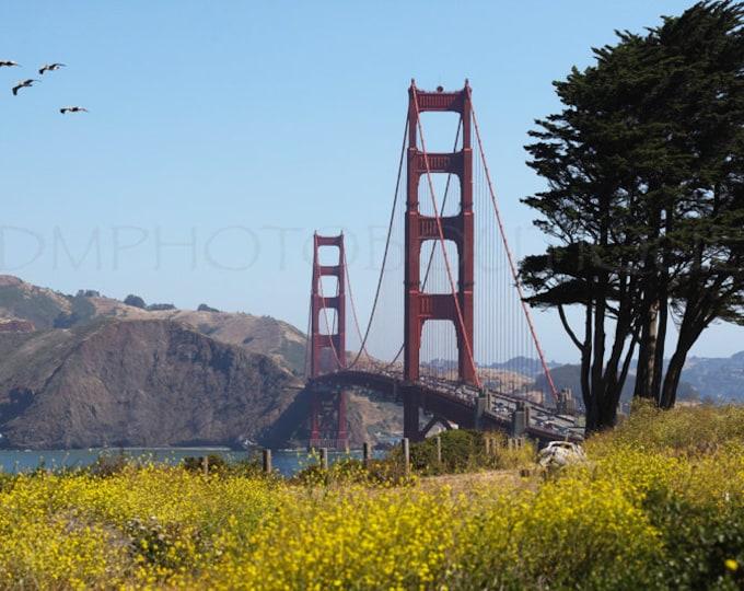 Golden Gate Bridge Print, Golden Gate Bridge, Golden Gate Bridge Photo, San Francisco, Golden Gate Wall Art, Golden Gate Bridge Wall Art